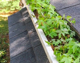 Gutter Protection Breakdown