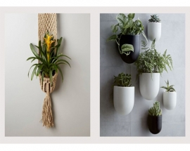 PERFECT WALL PLANTERS FOR INDOOR AND OUTDOOR BLISS