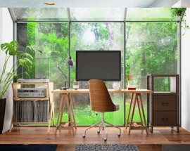 Interior Landscaping Ideas for Work from Home Offices From Professionals